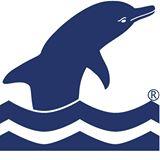 Delphin BCN_ecoalternative.net