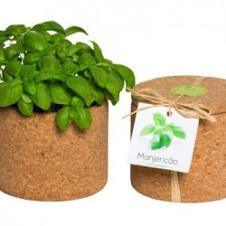 grow_cork