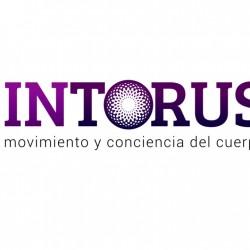 intorus-logo