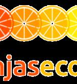 logo-naranjaseco23